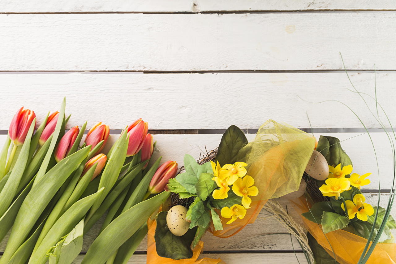 Картинка Пасха яйцами Тюльпаны цветок Первоцвет Праздники Доски яиц яйцо Яйца тюльпан Цветы Примула
