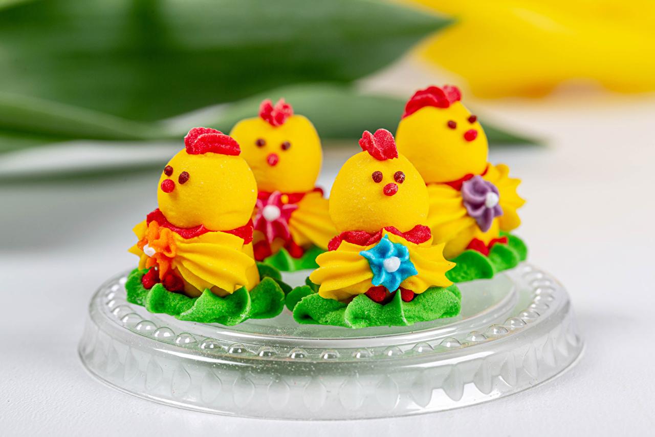 Картинки Птенец курицы Пища Пирожное Дизайн Цыплята Еда Продукты питания дизайна
