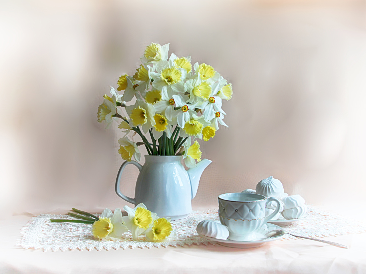Фотография Зефир Цветы Чайник Нарциссы Еда Чашка Натюрморт цветок Пища чашке Продукты питания