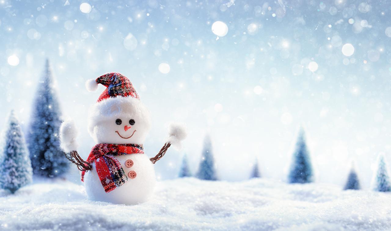 Фотография шарфе Варежки Зима Шапки снегу Снеговики Шарф шарфом варежках рукавицы рукавицах шапка зимние в шапке Снег снега снеге снеговик снеговика