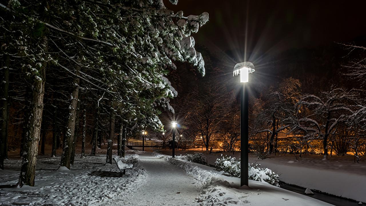 Фотографии Загреб Хорватия Samobor зимние Природа Снег Парки Ночные Уличные фонари Деревья Зима парк снеге снега снегу Ночь ночью в ночи дерево дерева деревьев