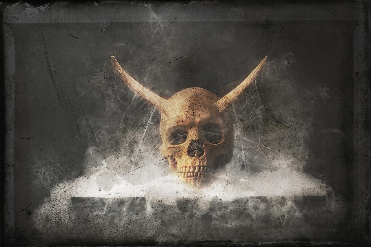 Фото Черепа Рога Фэнтези Дым с рогами Фантастика дымит