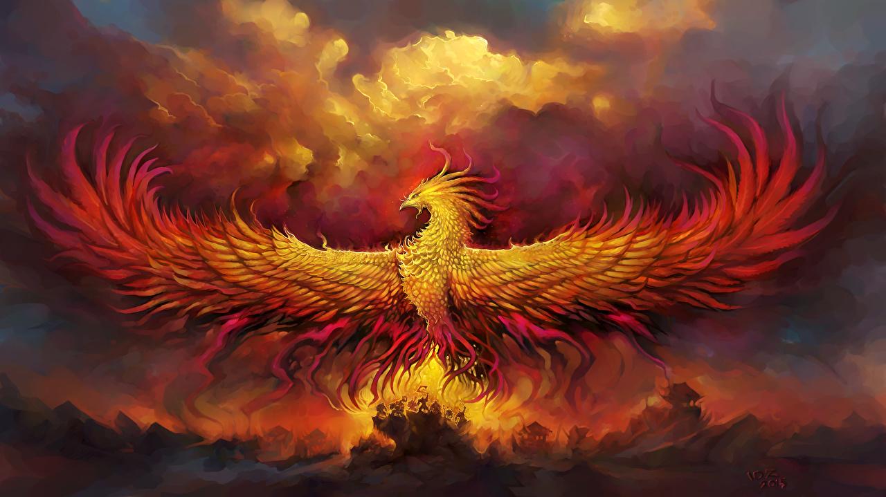 Обои крылья, феникс. Животные foto 7