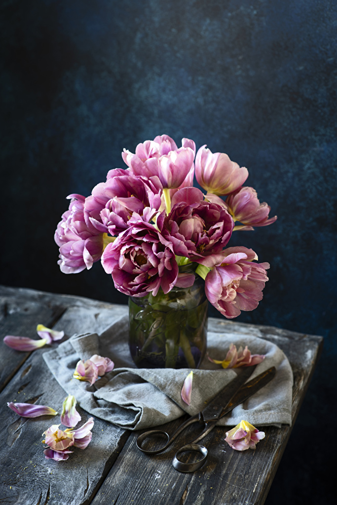 Фотографии Лепестки Тюльпаны Цветы