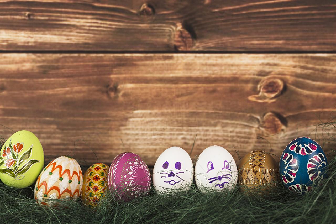 Картинка Пасха яиц траве Доски яйцо Яйца яйцами Трава
