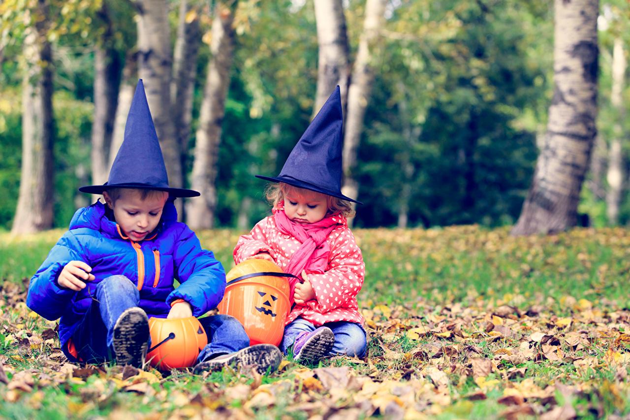 Фотография Девочки мальчик Дети два Шляпа Тыква Хеллоуин Сидит Праздники девочка Мальчики мальчишки мальчишка ребёнок 2 две Двое шляпе шляпы вдвоем сидя сидящие