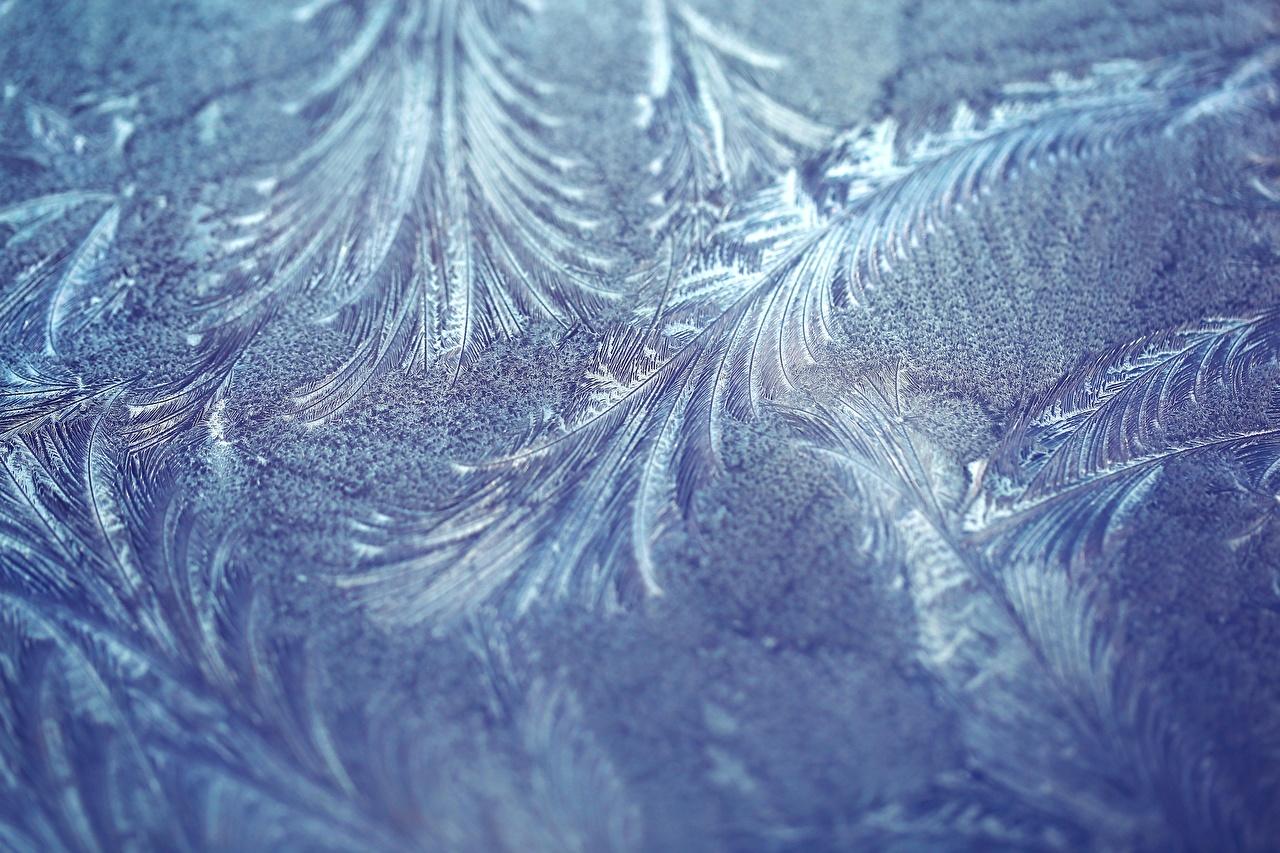 Фотография орнамент Иней Природа Крупным планом Узоры вблизи
