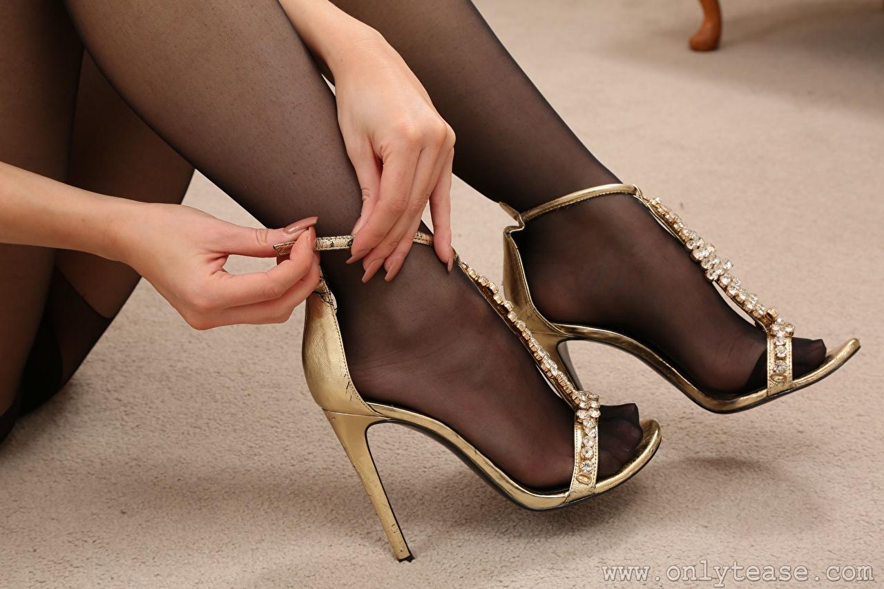Картинка Колготки молодые женщины Ноги Руки Крупным планом туфель колготок колготках девушка Девушки молодая женщина ног рука вблизи Туфли туфлях