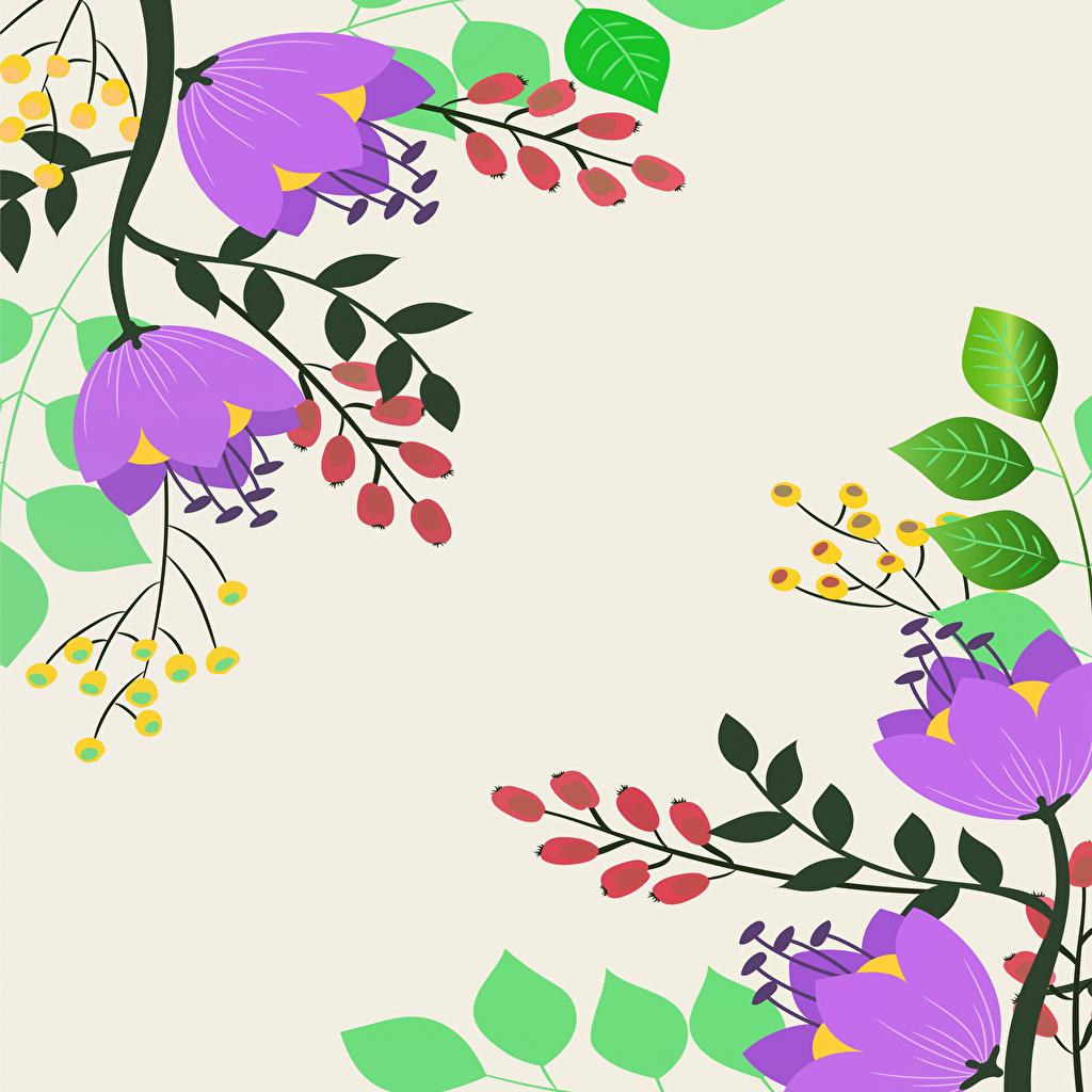 Картинка Листва Цветы Ягоды на ветке Рисованные лист Листья цветок ветвь ветка Ветки