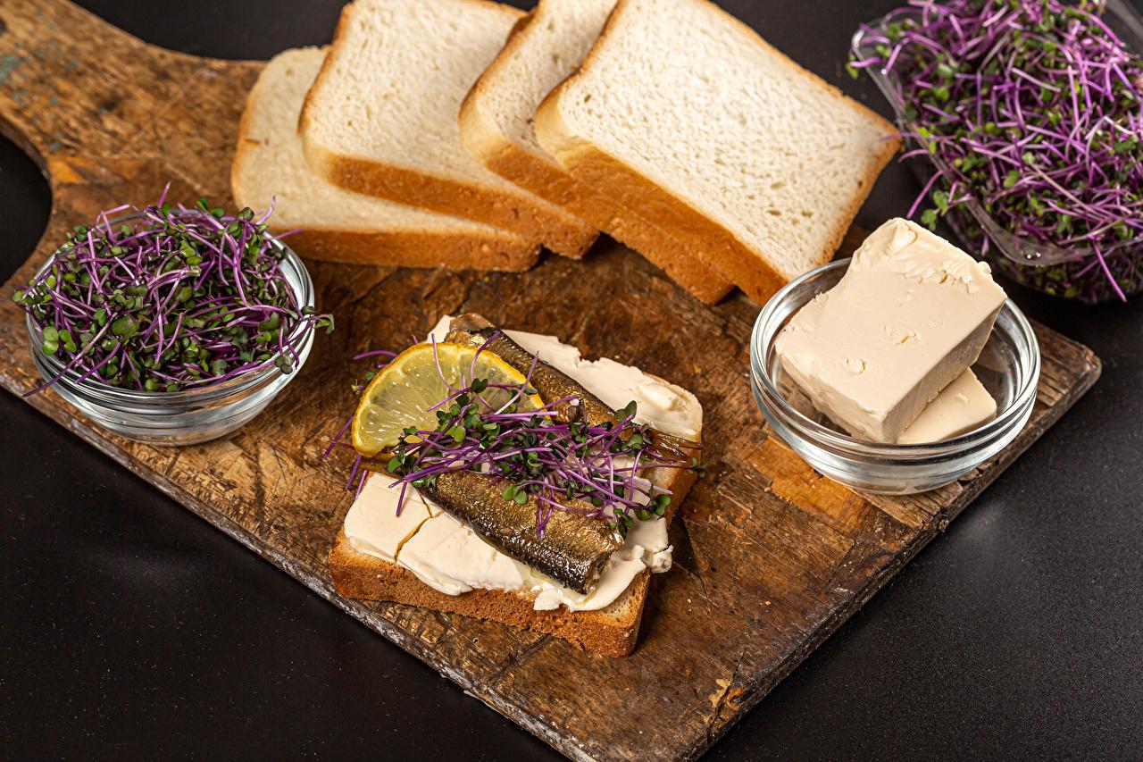 Фотографии microgreen Масло Хлеб Рыба бутерброд Еда Разделочная доска сером фоне масла Бутерброды Пища Продукты питания разделочной доске Серый фон