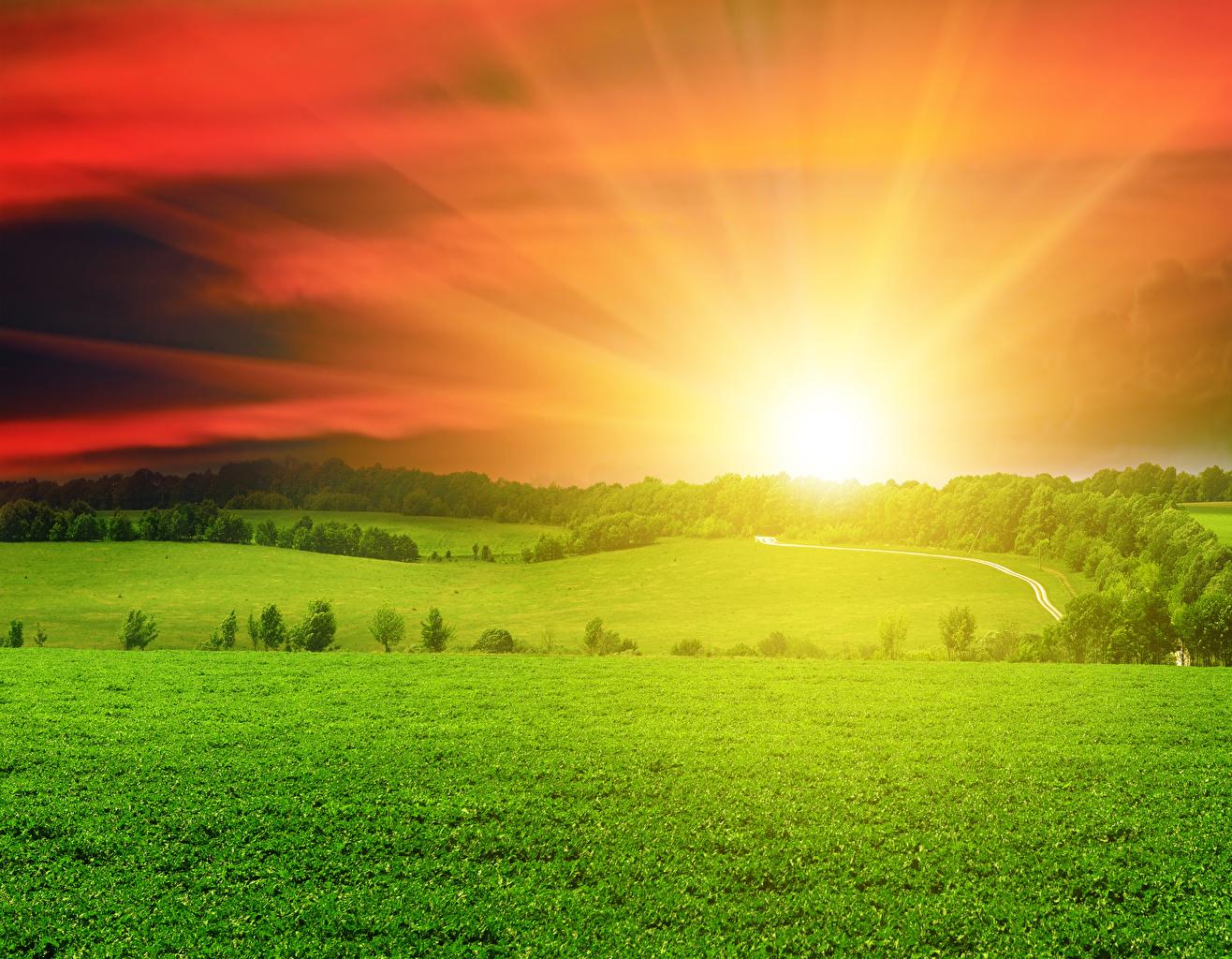 Картинка Солнце Природа Небо Поля Пейзаж рассвет и закат Трава солнца Рассветы и закаты траве