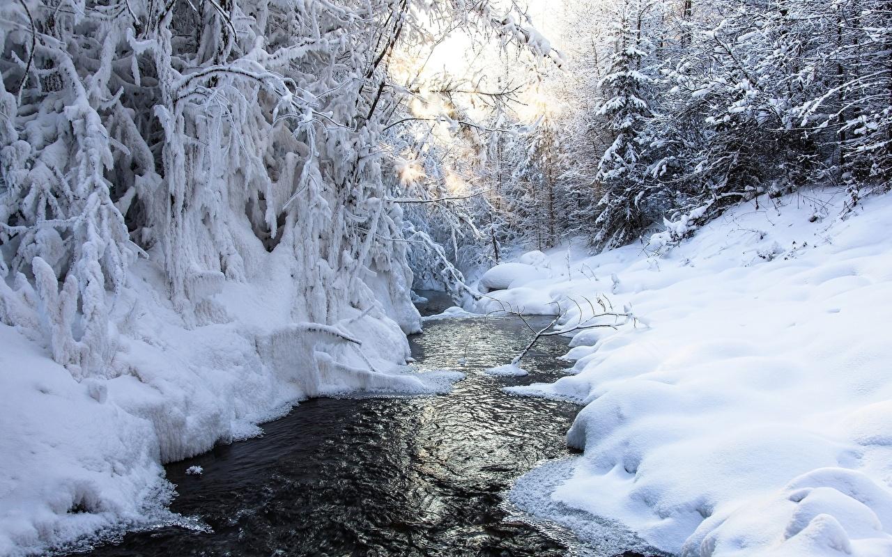 Фотография Зима Ручей Природа снеге ручеек зимние Снег снегу снега