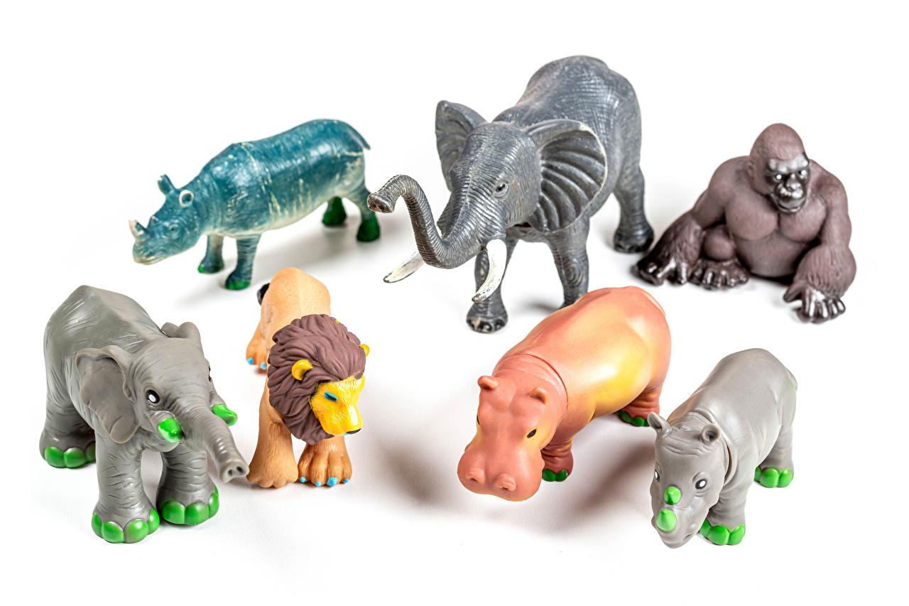 Фотографии Львы Слоны Бегемоты обезьяна игрушка животное Белый фон лев слон Обезьяны Гиппопотамы Игрушки Животные белом фоне белым фоном