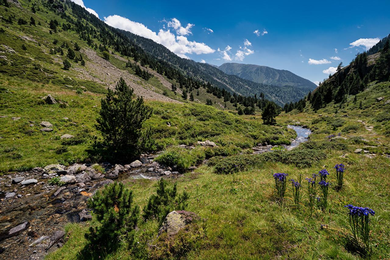 Картинка Андорра Ordino Горы Ручей Природа Камень гора ручеек Камни