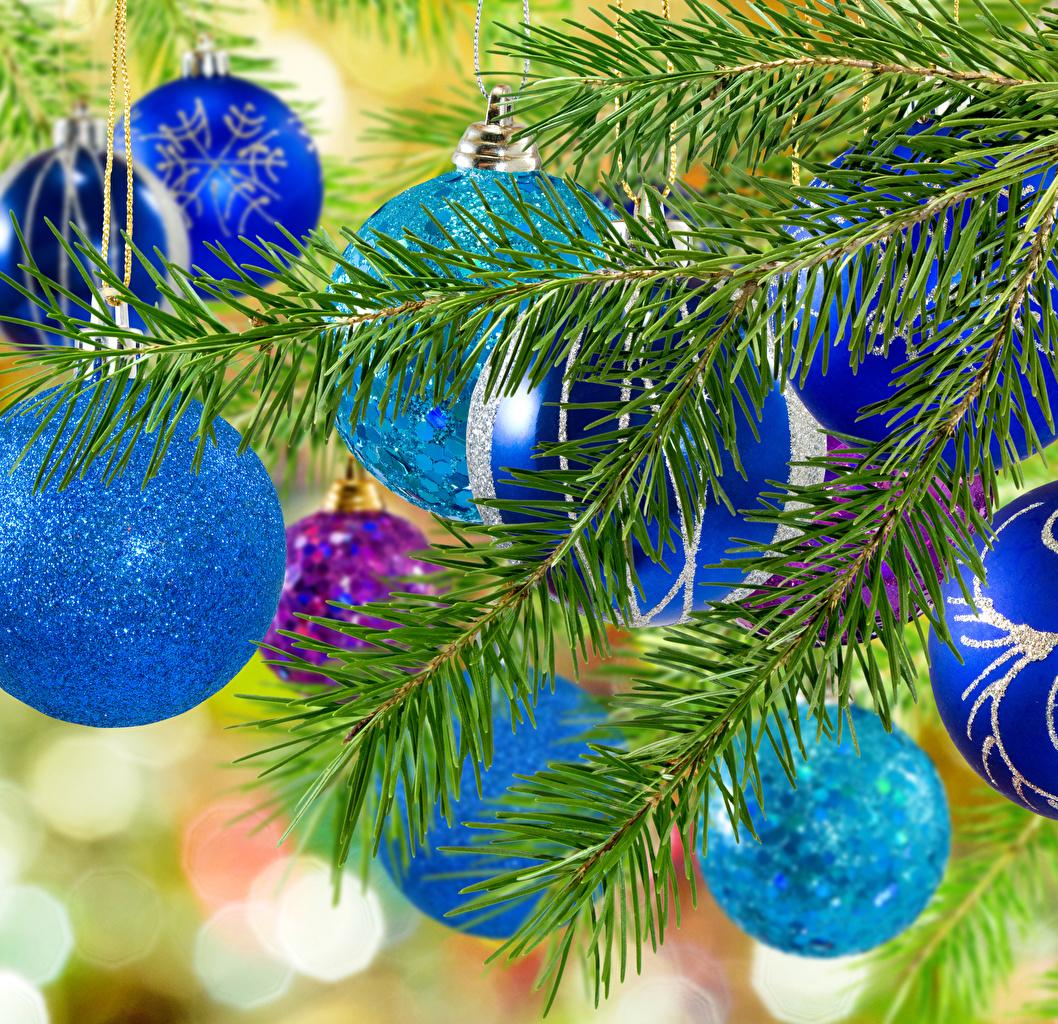 Фото Рождество Голубой ветвь Шарики Новый год Шар Ветки