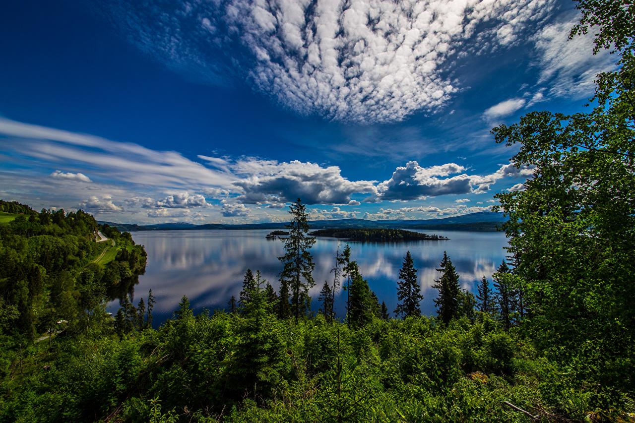 Картинки Норвегия Geiranger Природа Небо Облака Деревья дерево облако дерева облачно деревьев