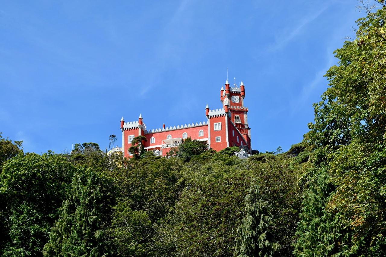 Фотографии Португалия Sintra, Park Sintra-Cascais Замки Парки Города