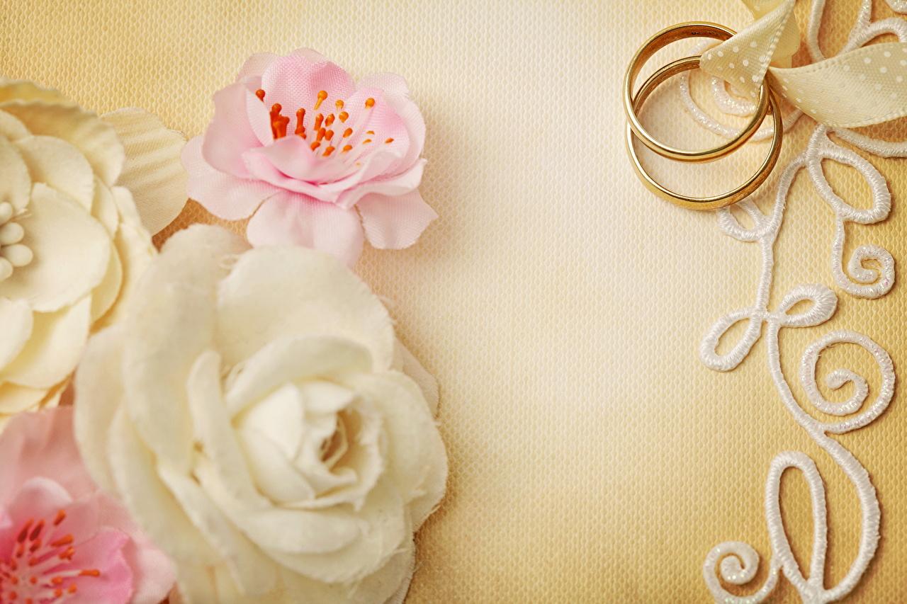 Фото свадьбы две Розы цветок кольца вблизи Украшения брак Свадьба свадьбе свадебные 2 два роза Двое вдвоем Цветы кольца Кольцо ювелирное кольцо Крупным планом
