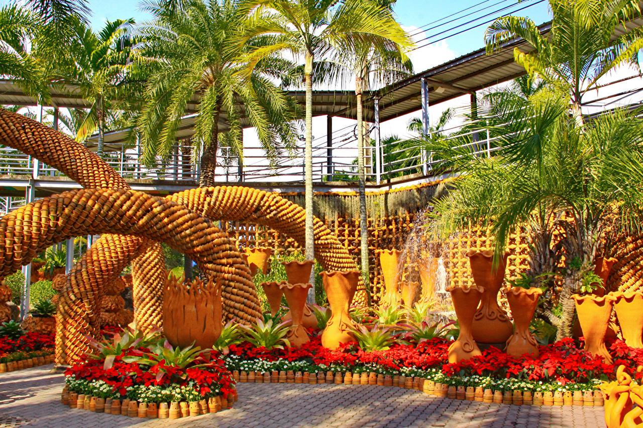 Картинка Таиланд Nong Nooch Tropical Botanical Garden Природа Сады пальма дизайна пальм Пальмы Дизайн