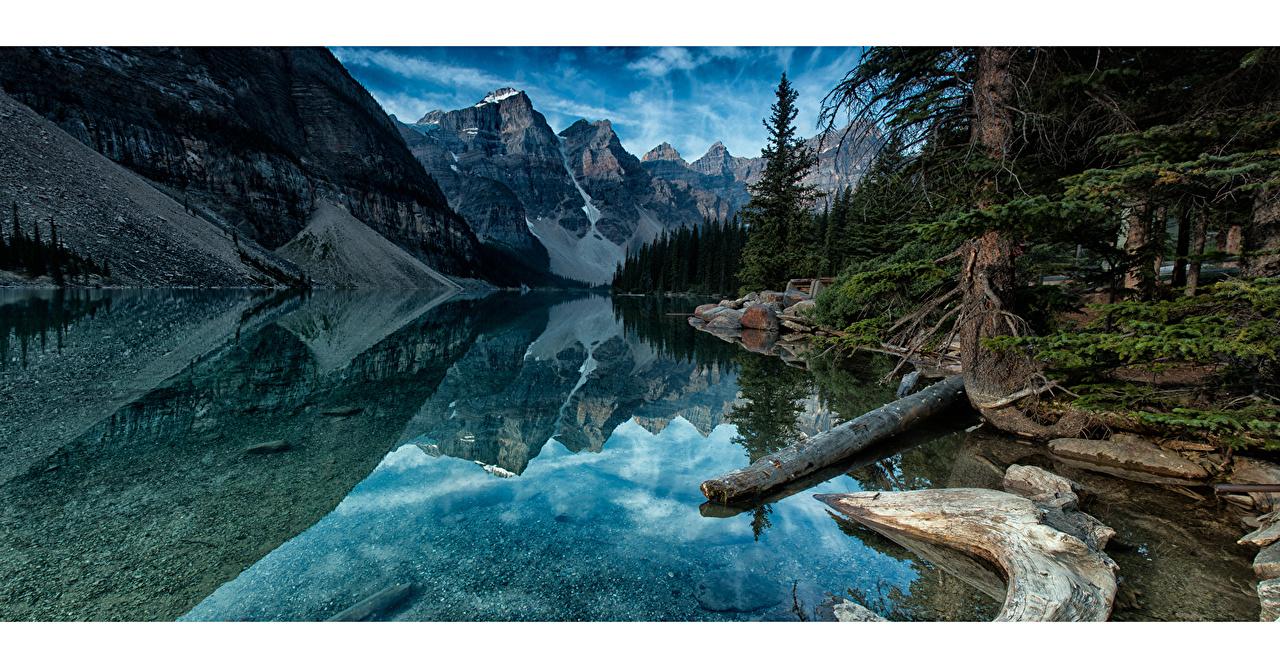 Фото Банф Канада moraine lake, alberta ели Горы Природа Озеро Пейзаж дерево Ель гора дерева Деревья деревьев