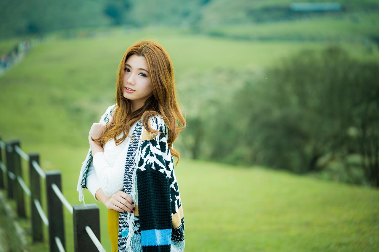 Фотографии Шатенка боке молодая женщина Азиаты смотрит шатенки Размытый фон девушка Девушки молодые женщины азиатка азиатки Взгляд смотрят