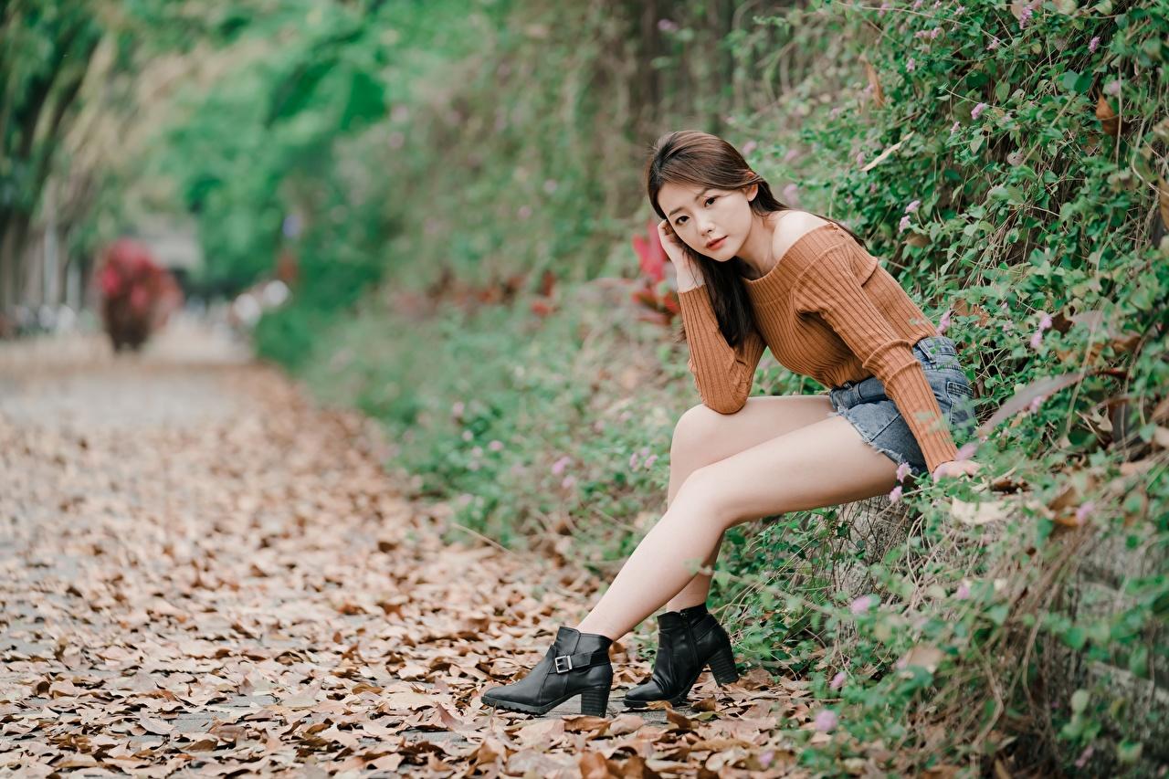 Картинки Листья Шатенка боке осенние молодые женщины ног азиатка сидящие лист Листва шатенки Размытый фон Осень девушка Девушки молодая женщина Ноги Азиаты азиатки сидя Сидит