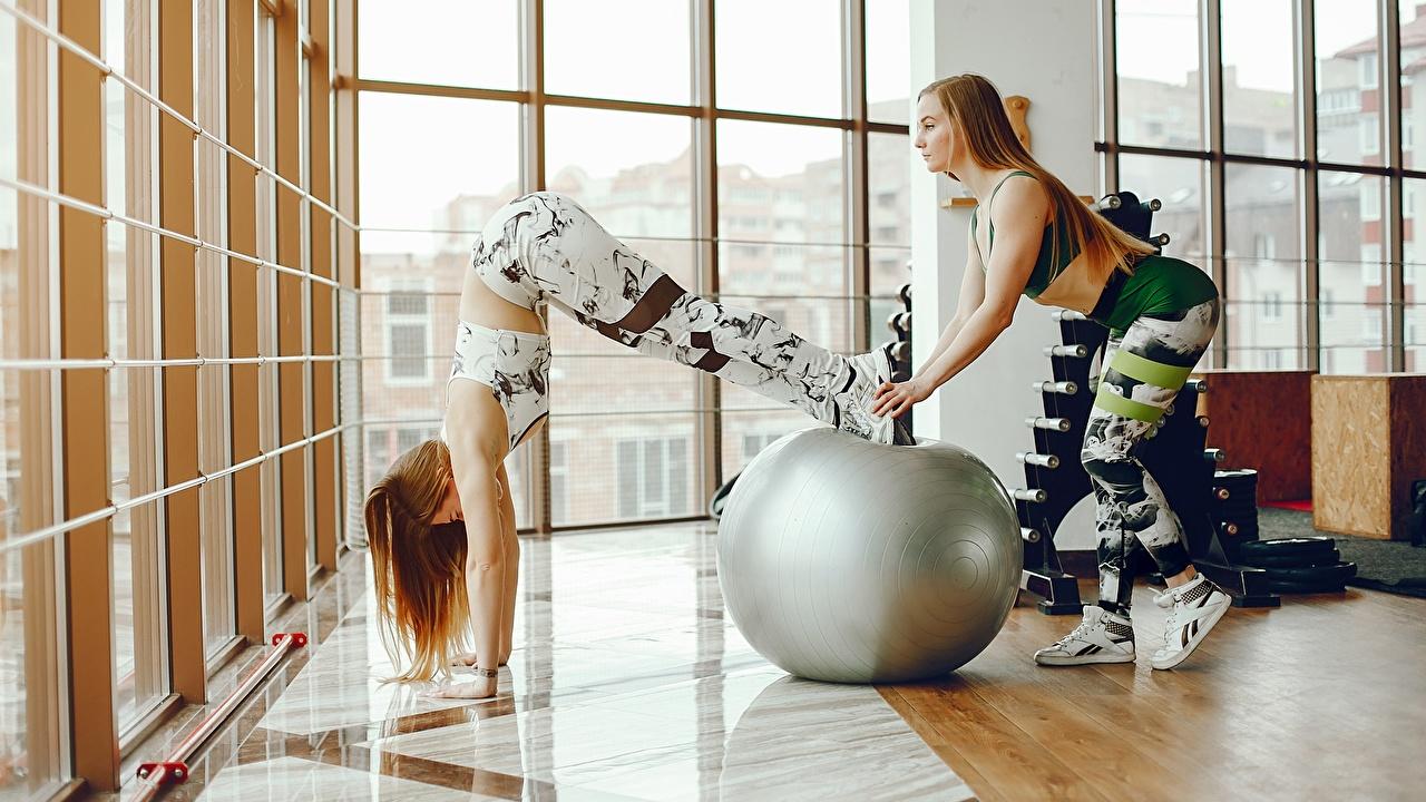Фото физическое упражнение Фитнес Двое спортивные молодые женщины Мячик Тренировка тренируется 2 два две Спорт вдвоем девушка Девушки спортивная спортивный молодая женщина Мяч