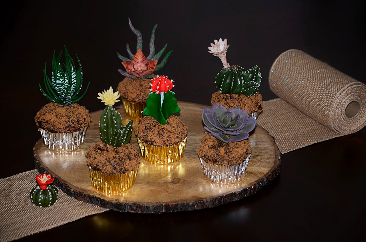 Фото Кактусы Продукты питания Пирожное сладкая еда дизайна Еда Пища Сладости Дизайн
