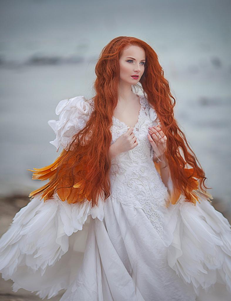 Обои Рыжая Невеста Волосы Девушки Платье