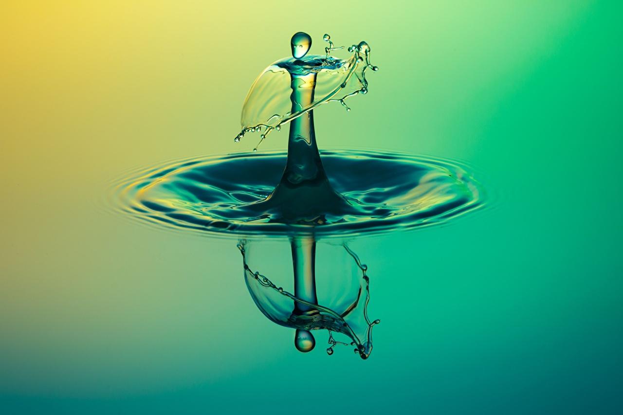 Фотография капля Макро Вода Крупным планом Капли капель капельки Макросъёмка вблизи