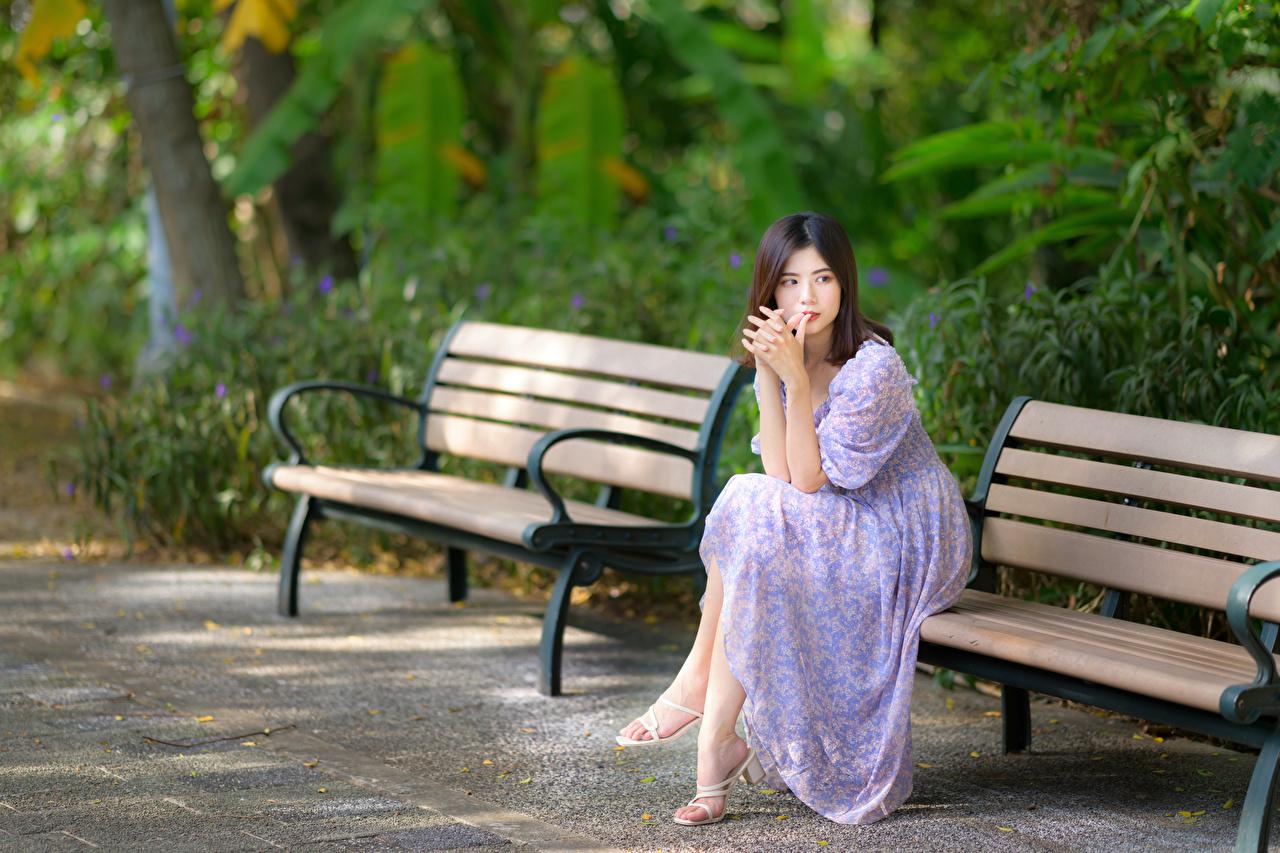 Обои для рабочего стола боке девушка Азиаты Сидит Скамейка платья Размытый фон Девушки молодая женщина молодые женщины азиатки азиатка сидя Скамья сидящие Платье