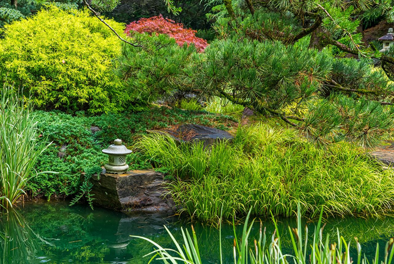 Обои для рабочего стола америка Gibbs Gardens Природа Сады Пруд Ветки траве Уличные фонари США штаты ветвь ветка Трава на ветке