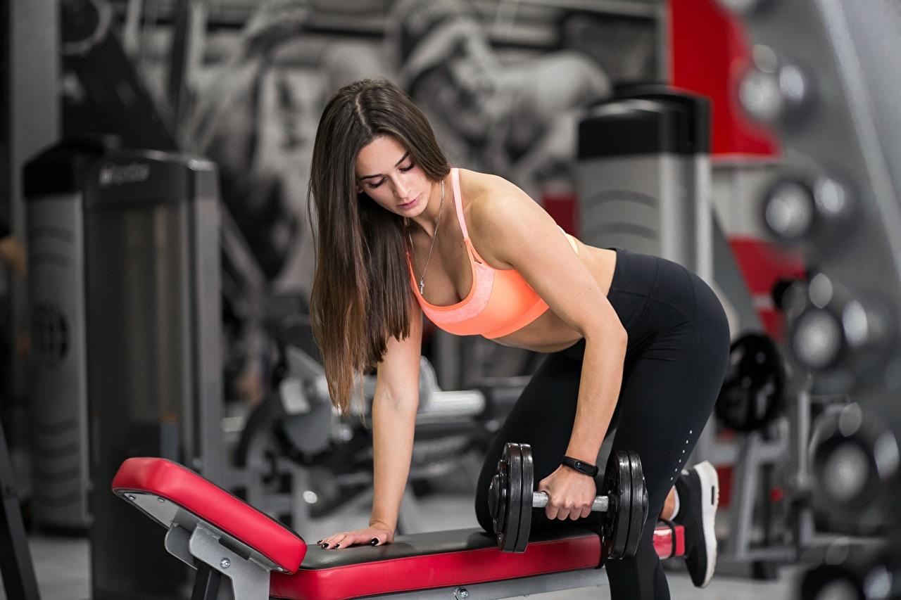 Фотография Шатенка тренируется Поза Фитнес Девушки гантелями Руки шатенки Тренировка физическое упражнение позирует гантеля гантель Гантели девушка гантелей молодая женщина молодые женщины рука