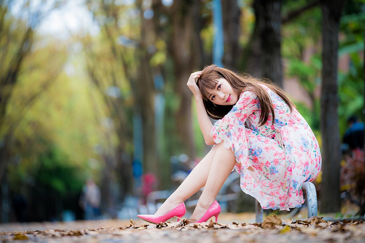 Фотографии шатенки Размытый фон красивая позирует Девушки азиатки сидящие смотрит платья Шатенка боке Поза красивый Красивые девушка молодые женщины молодая женщина Азиаты азиатка сидя Сидит Взгляд смотрят Платье