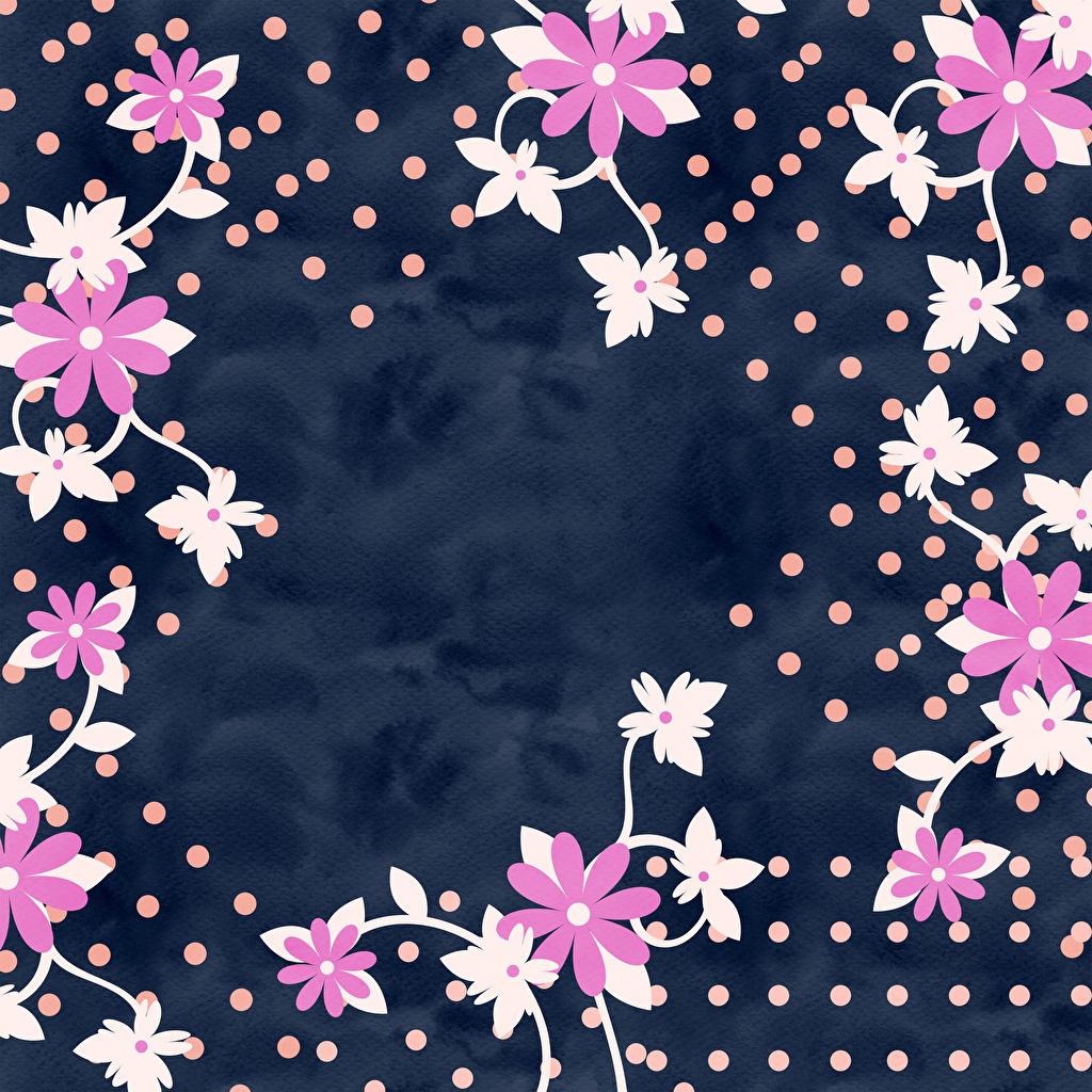 Фото лепестков Цветы Шаблон поздравительной открытки Лепестки цветок