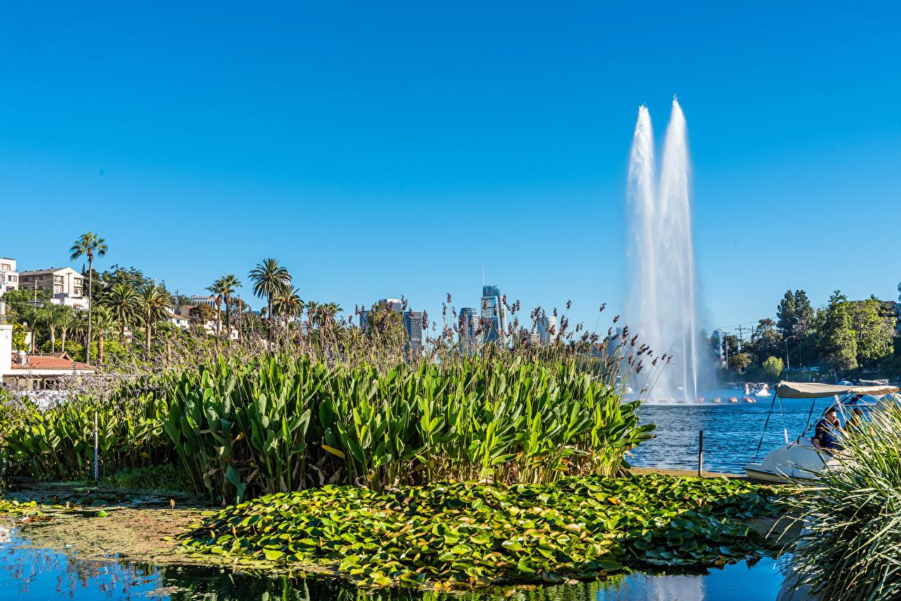 Обои для рабочего стола калифорнии Лос-Анджелес США Фонтаны Echo Park Lake Природа парк Калифорния штаты Парки