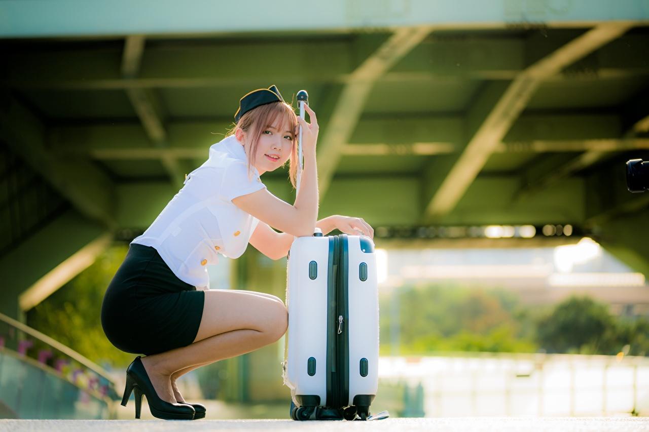 Фото Шатенка стюардесса Размытый фон девушка азиатки чемоданом сидя шатенки стюардесс Стюардессы боке Девушки молодая женщина молодые женщины Азиаты азиатка Чемодан чемоданы Сидит сидящие