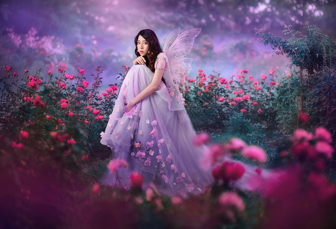 Фото Феи роза девушка Фантастика Азиаты Сидит Платье Розы Девушки Фэнтези молодая женщина молодые женщины азиатки азиатка сидя сидящие платья
