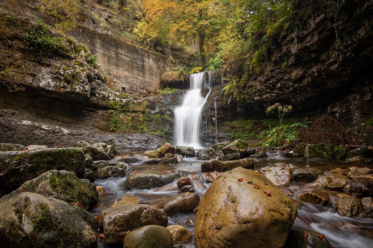 Фотографии Осень Природа Водопады Мох Камни осенние мха мхом Камень