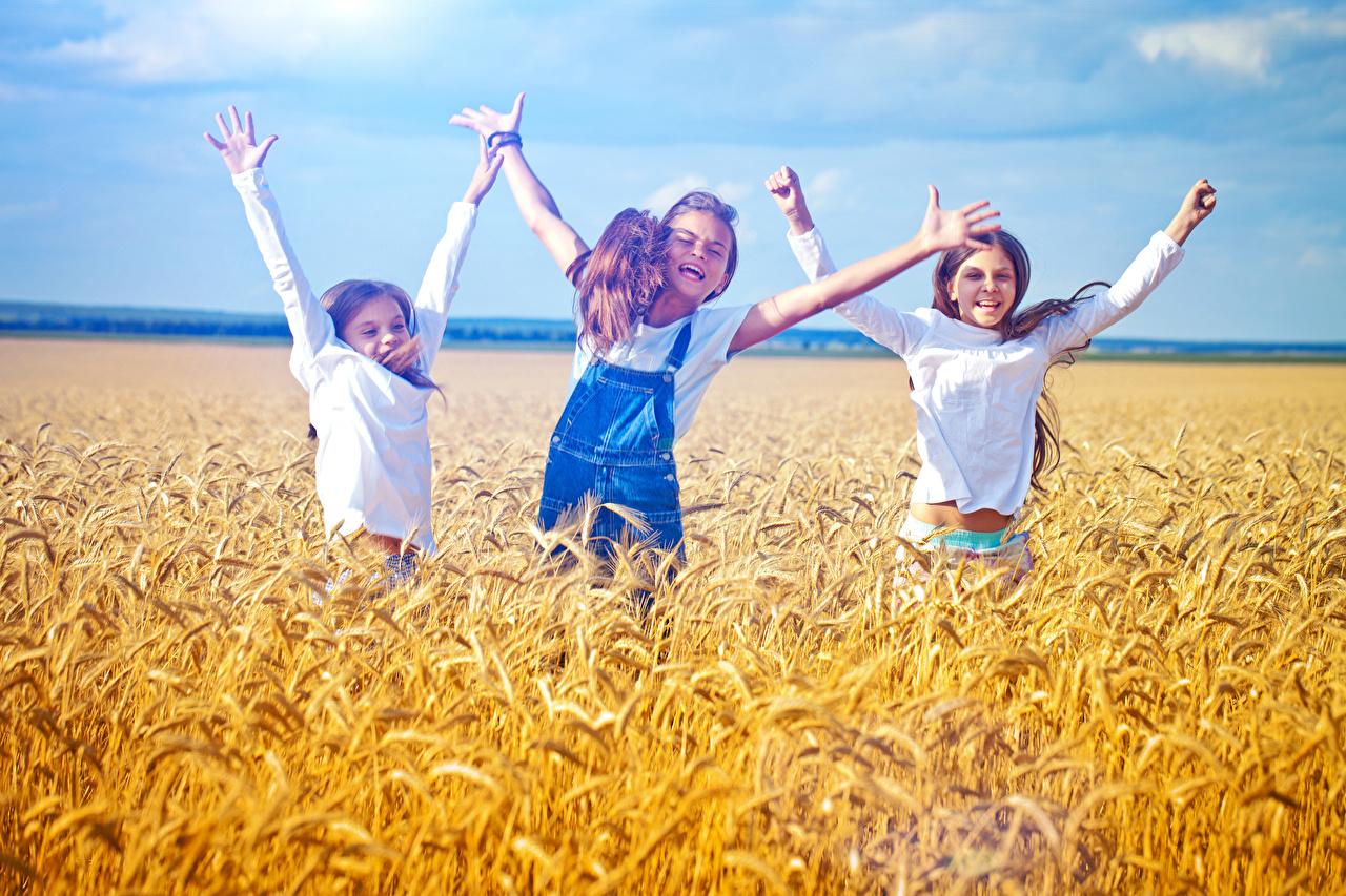 Фото Девочки Радость Дети Поля Колос Руки Трое 3 счастье счастливые Ребёнок втроем