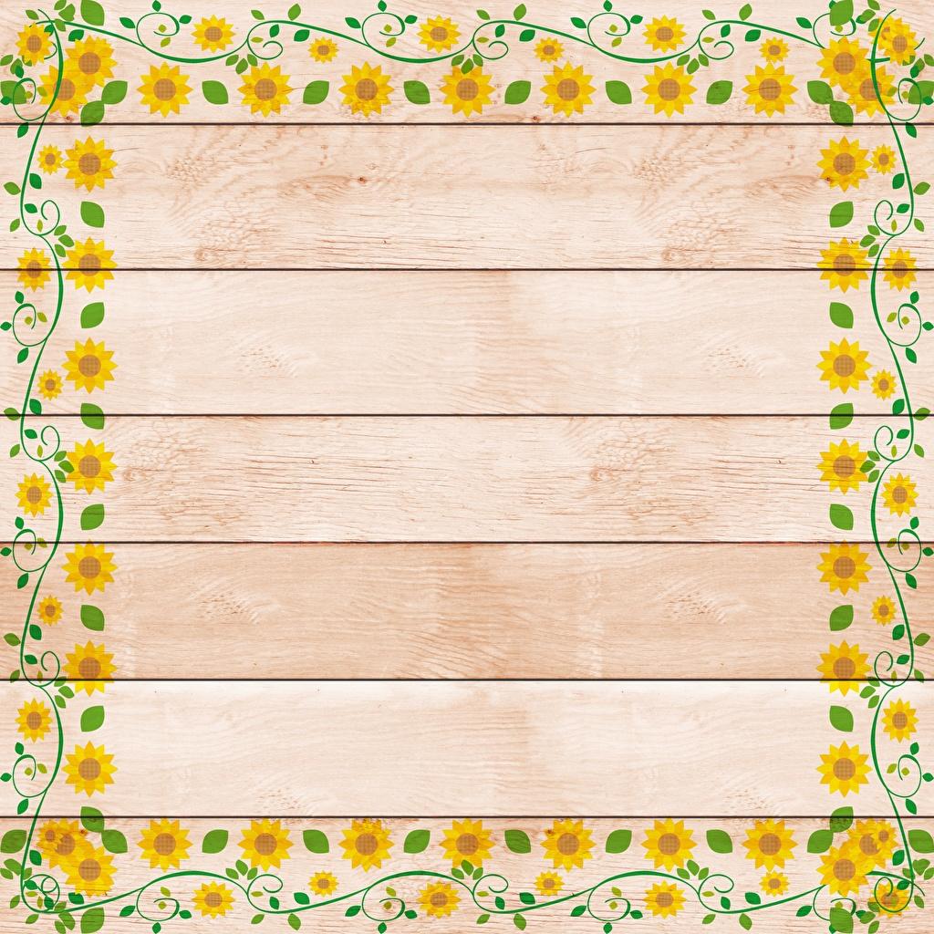 Картинка Цветы Шаблон поздравительной открытки Рисованные Доски цветок