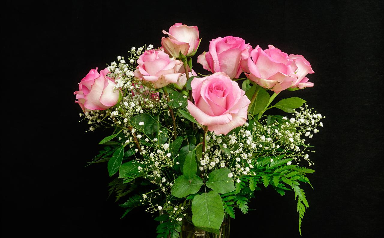Фотография букет роза розовая Цветы Черный фон Букеты Розы розовых Розовый розовые цветок на черном фоне