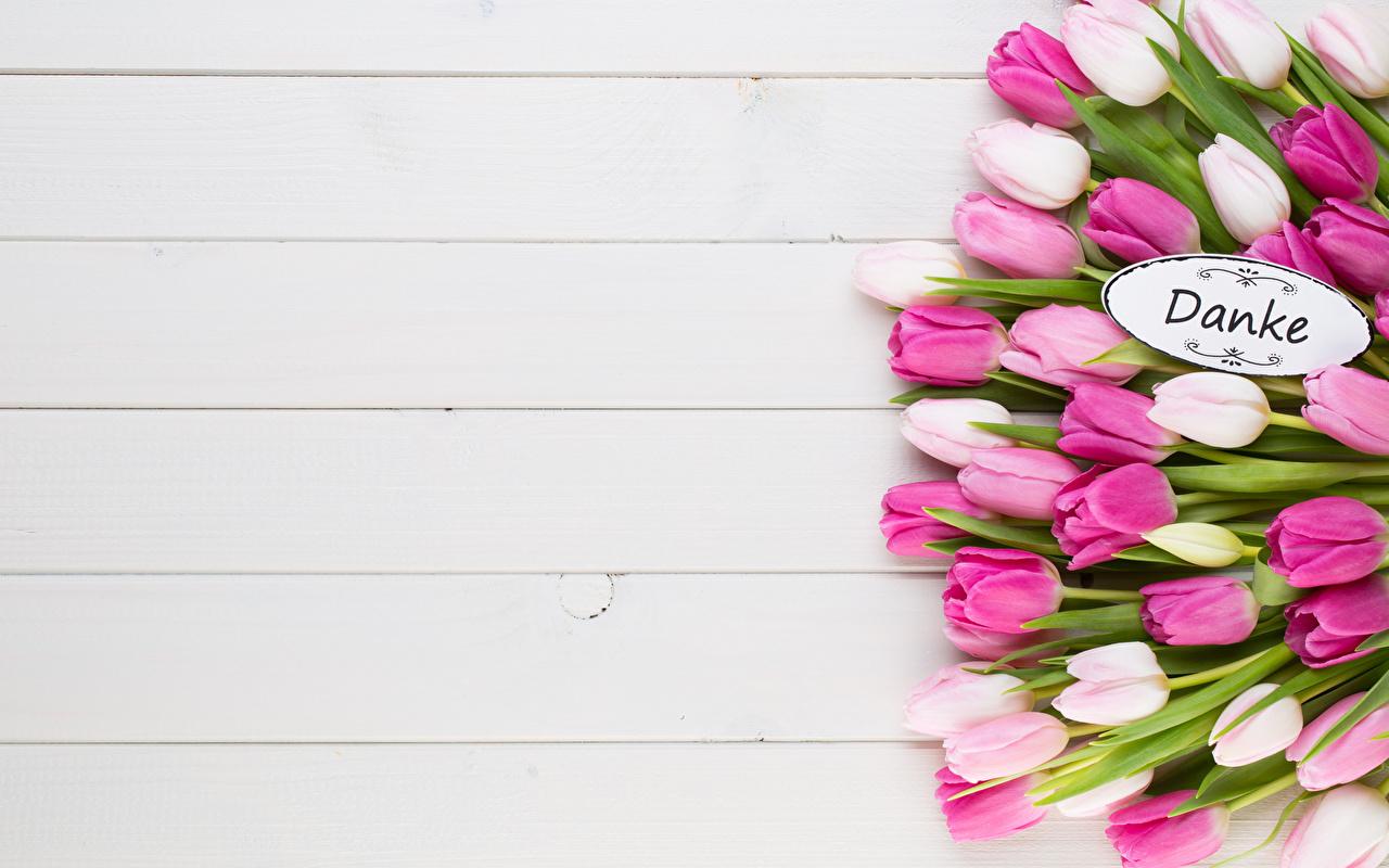 Картинка Немецкий букет Тюльпаны текст Цветы Шаблон поздравительной открытки Доски Букеты тюльпан слова цветок Слово - Надпись