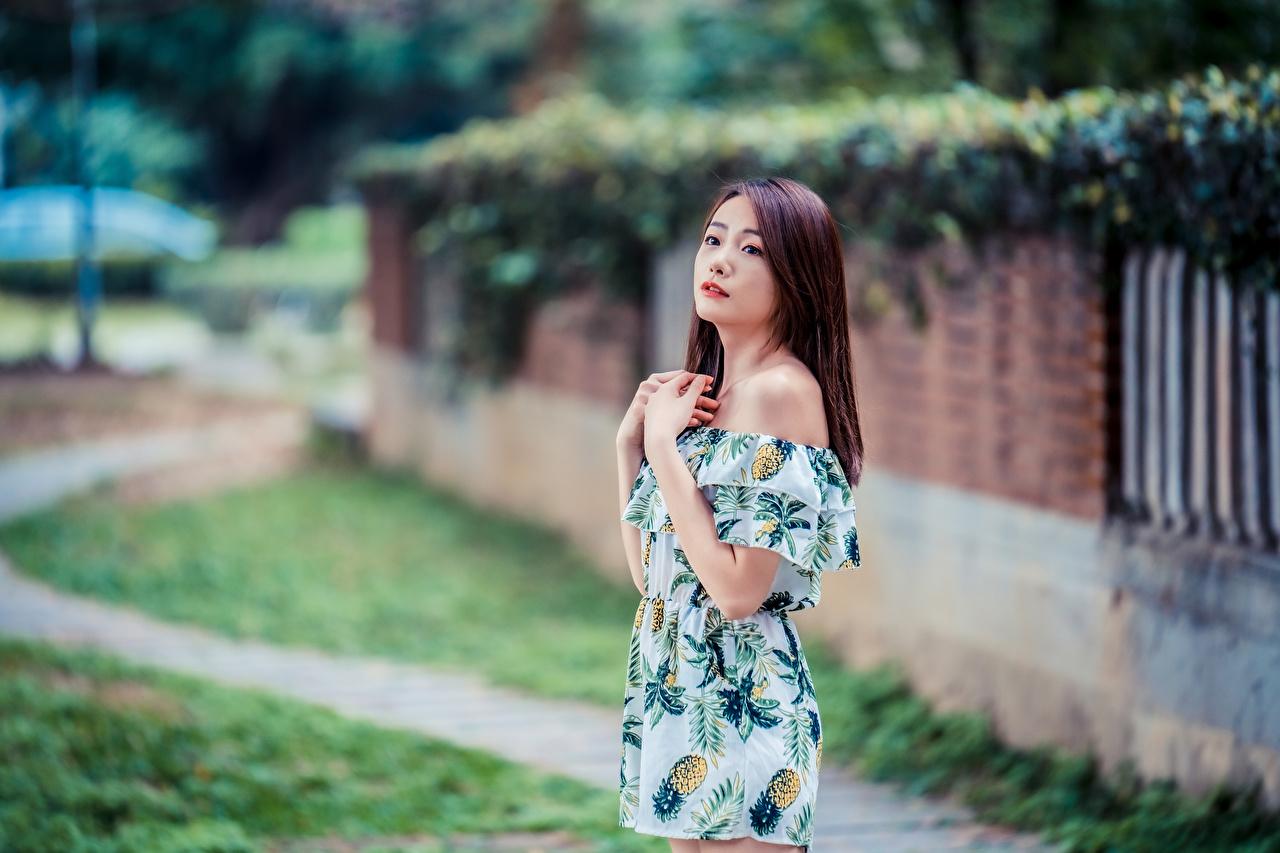 Картинки Размытый фон девушка Азиаты Руки Взгляд платья боке Девушки молодая женщина молодые женщины азиатки азиатка рука смотрит смотрят Платье