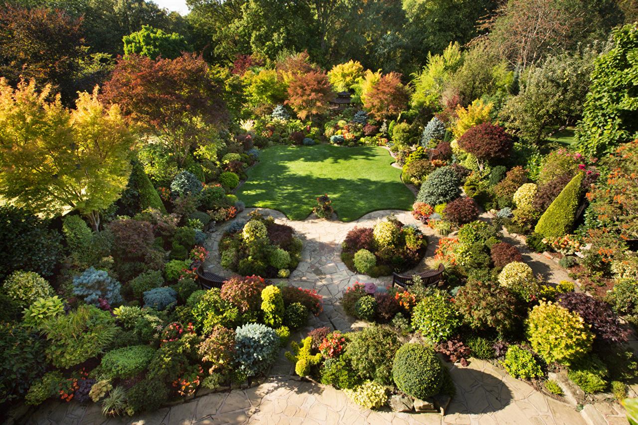 Обои для рабочего стола Англия Walsall Garden Природа Сады Газон Кусты Дизайн газоне кустов дизайна