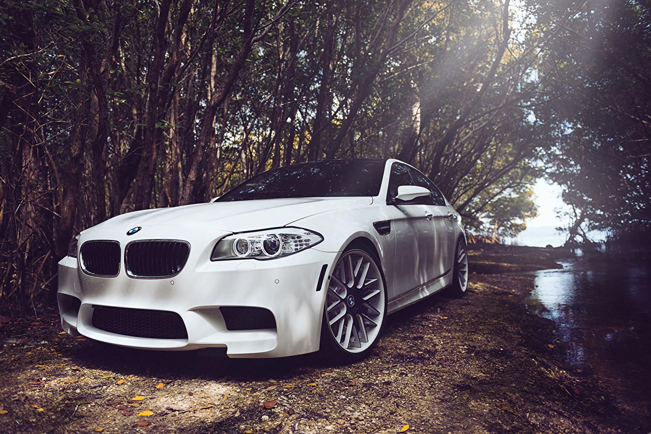 Картинка BMW m5 f10 белых фар автомобиль БМВ белая белые Белый Фары авто машины машина Автомобили