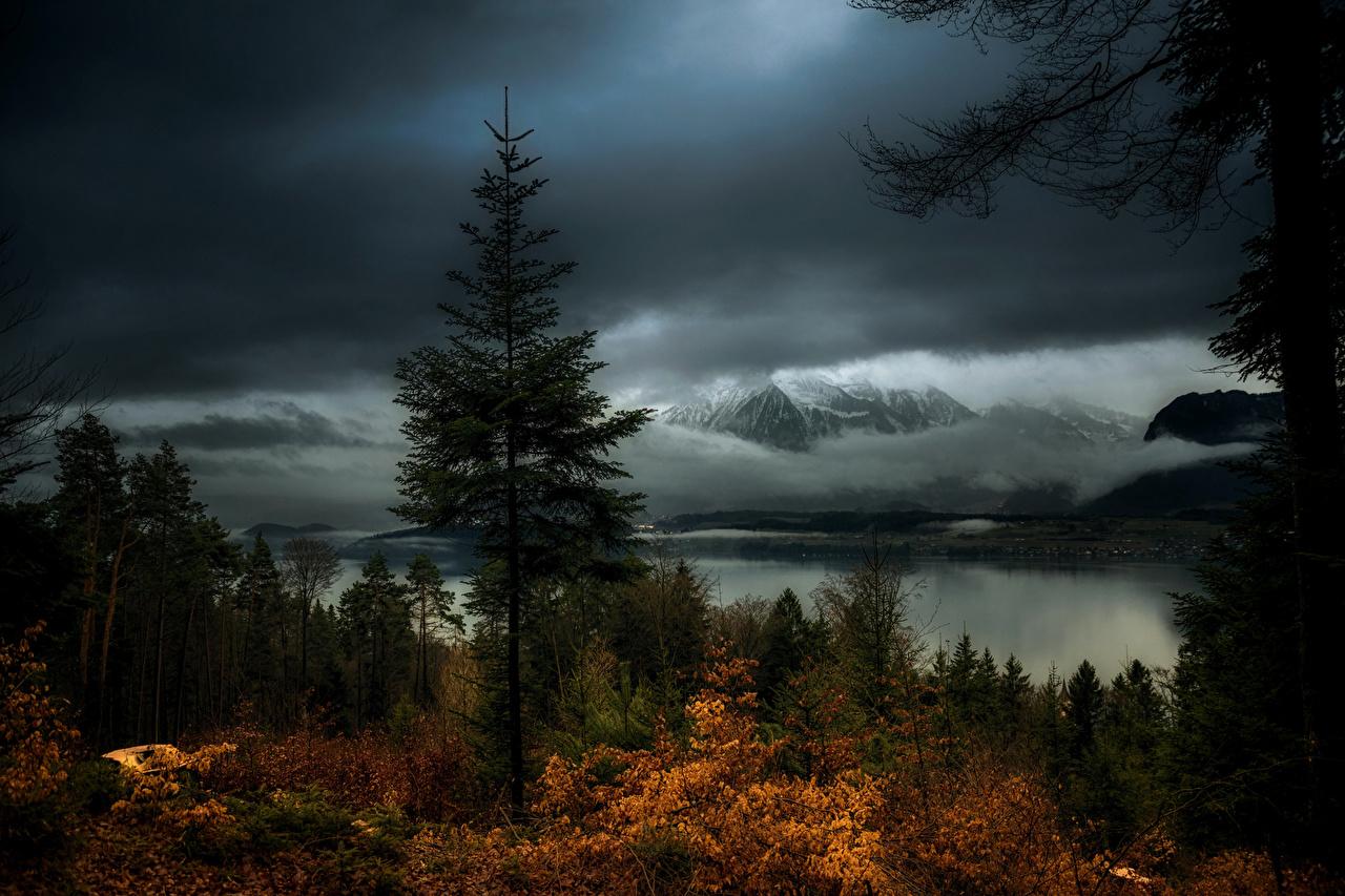 Картинка Швейцария Hilterfingen Canton of Berne Горы Природа осенние Леса Озеро Вечер Осень