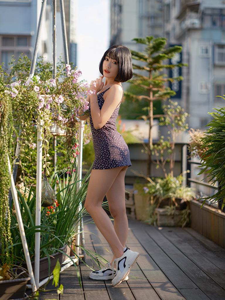 Картинка позирует Девушки ног азиатки Взгляд платья  для мобильного телефона Поза девушка молодая женщина молодые женщины Ноги Азиаты азиатка смотрит смотрят Платье