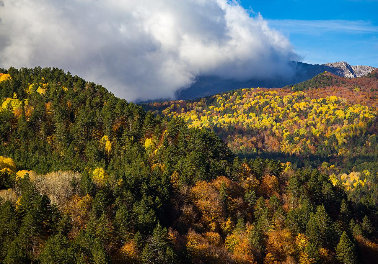 Фотография Горы Природа осенние Леса Осень