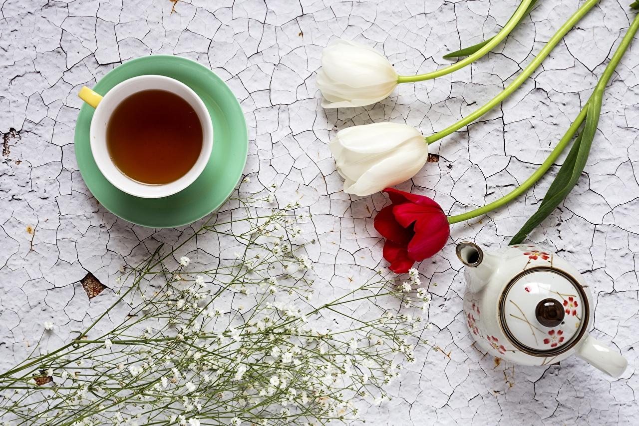 Картинки Чай тюльпан Цветы Чайник Пища чашке Сверху Тюльпаны цветок Еда Чашка Продукты питания